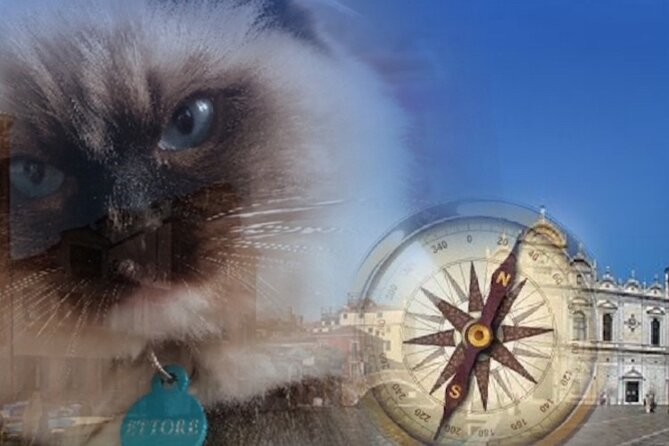 Treasure hunt: let's save the cat Ettore from evil