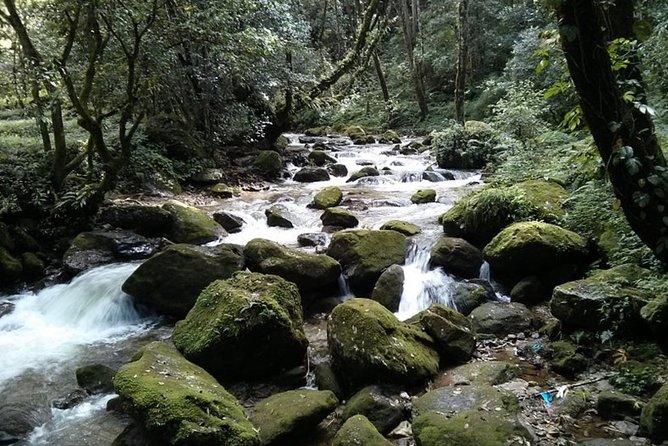 Half day Budaneelkantha hiking tour