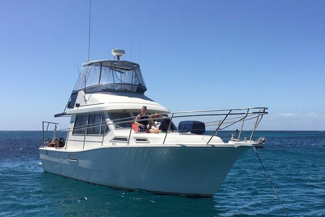 Single Boat Dive