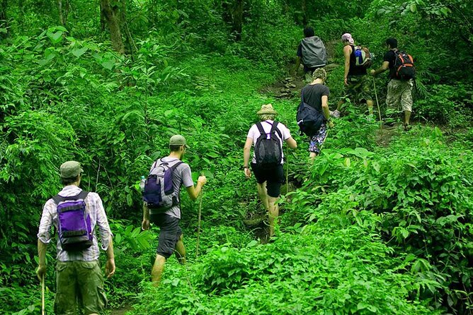 Rainforest Trekking in Kitulgala