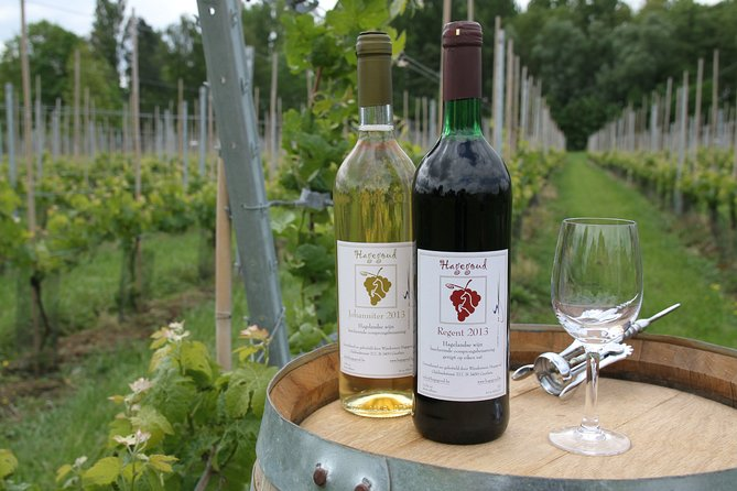 Hagegoud Vineyard and Winery Experience with wine Tasting
