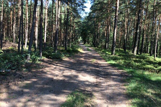 5 days bike Tour: Prague–Bohemian Switzerland National Park-Jizera Mountains