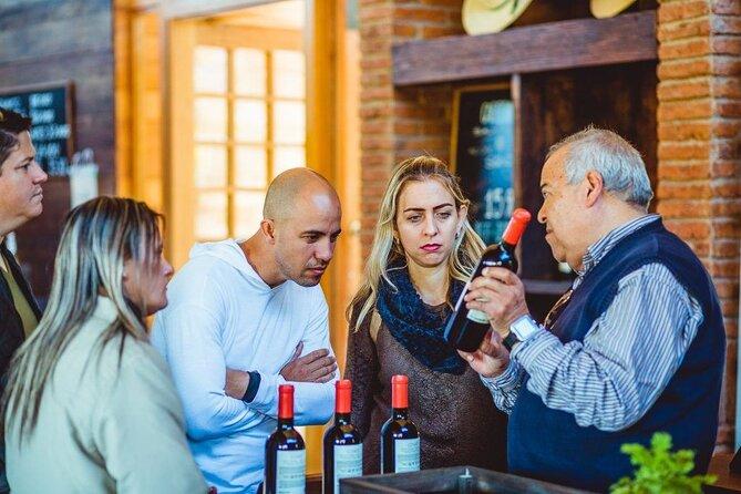 Wines in Casablanca Valley from Valparaiso