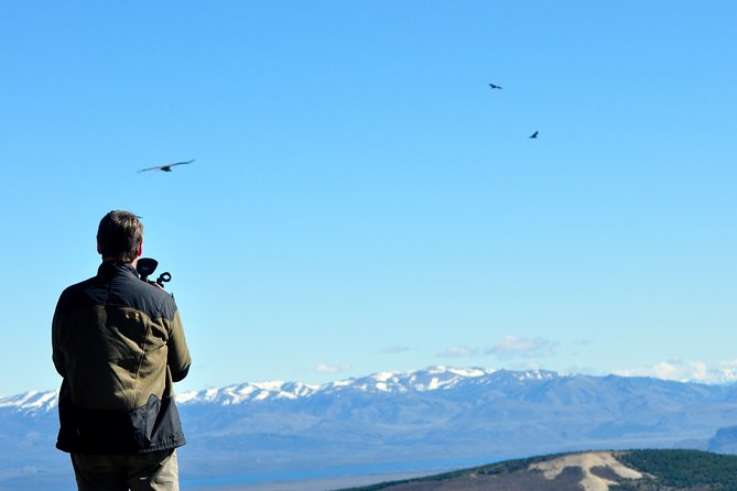 Photo Discovering Condors & Birdwatching - Full Day Tour in Private Service