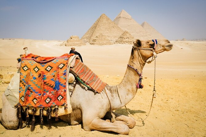 Cairo: 3 Private Full-Day Tours to Cairo Top Attractions