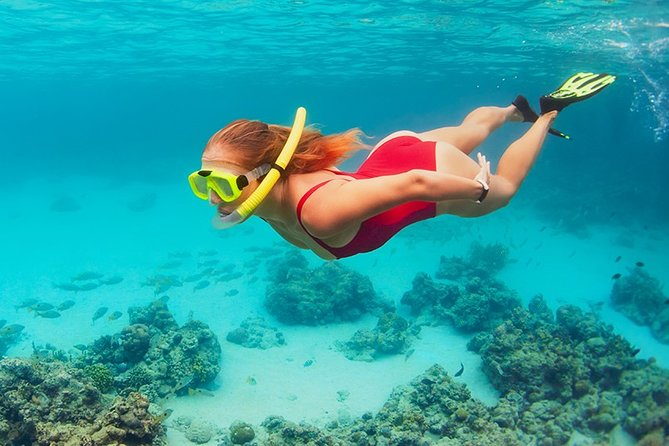 Complete Snorkeling tour at Cozumel from Cancun and Riviera Maya