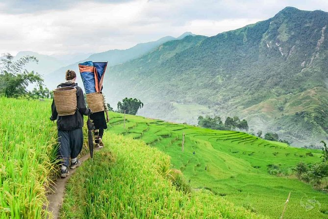 5 days Trekking through Hoang Lien National Park to Lao Cai