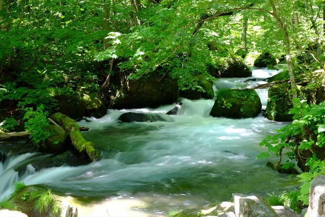 Oirase Gorge and Lake Towada Day Hike with Government-Licensed Guide