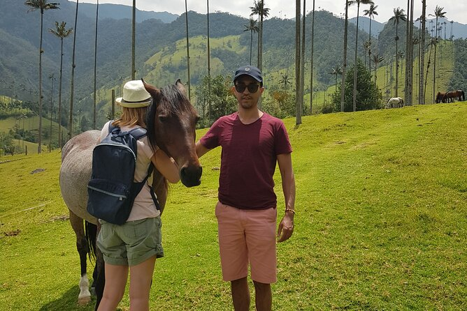 Cocora Tour, Water Star