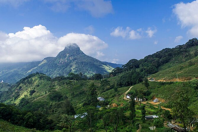 Knuckles and Riverston Trekking From Kandy One Night Two Days