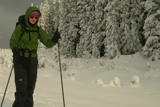 Chester Lake Cross Country Ski