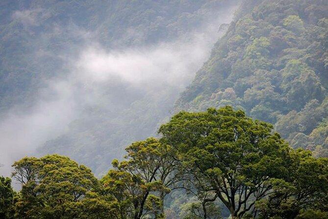 Kodiyaragala mandaram Nuwara Camping Night Tour From Kandy