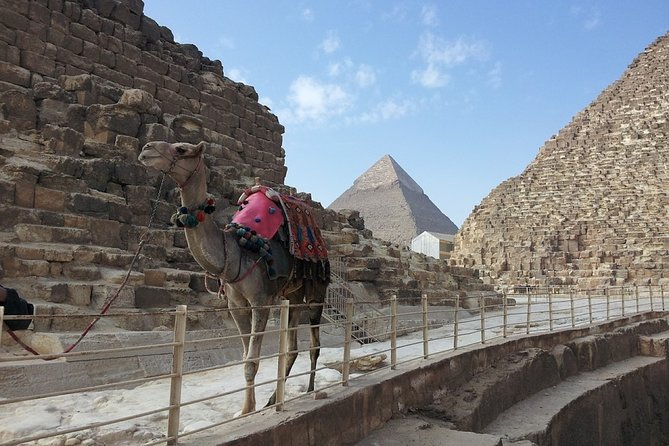 Turning into Pharaoh King while riding a Camel