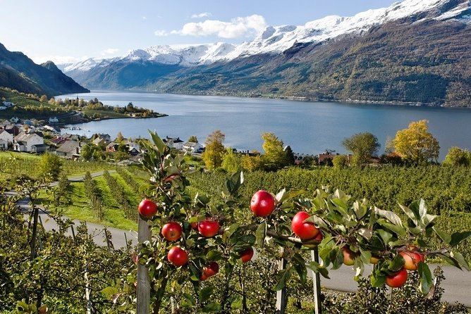 Guided day tour to Hardanger - Grand round trip - 3 fjord cruises in 1 day
