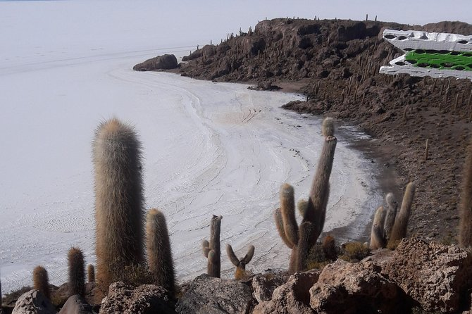 Visit to Uyuni Salt Flats from La Paz Bolivia by Bus photo 19