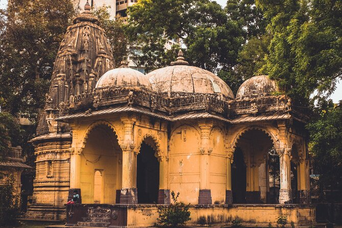 Nature Trails of Vadodara (2 Hours Guided Walking Tour)