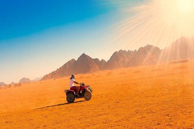 Quad Bike safari and bedouin Tea adven-From Cairo or Giza