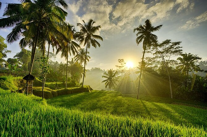 Best of Ubud with Tanah Lot Temple Private Tour