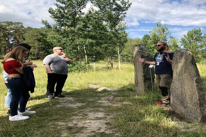 Private Tour: Swedish Iron Age Excursion from Stockholm 5h