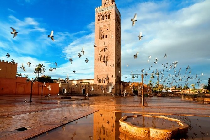 Marrakech Red City Day Trip from Casablanca