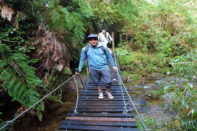 Chaiguen Adventure Park in Chiloe