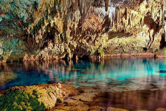 LIVE an UNIQUE EXPERIENCE in SACRED CENOTES with Transport and Bilingual Guide