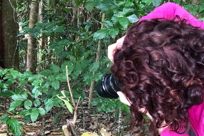 Let's Go Buggin - 2 Hour Photography Walking Tour