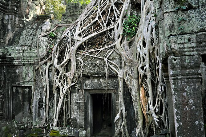 Guided Private A/C Vehicle Tour to Angkor Wat and Small Circle with Two Extras