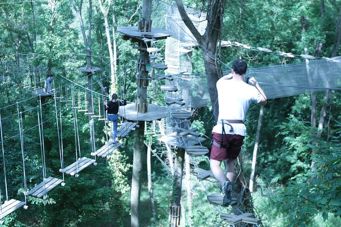 Tree Top Adventure in Rueil-Malmaison