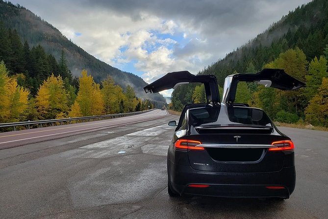 Tesla Model X Transfers