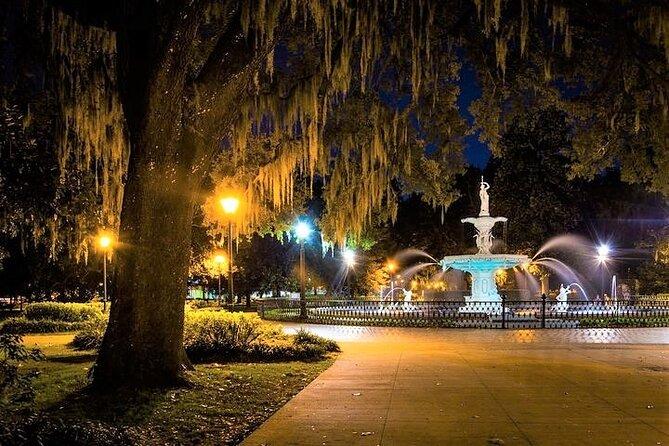 Savannah Secrets in the Night Illumination Tour