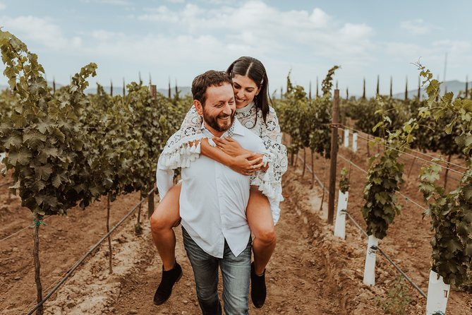 Private Full-Day Wine Tour in Valle de Guadalupe