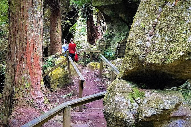 Scenic Escape with Glow Worm Caves