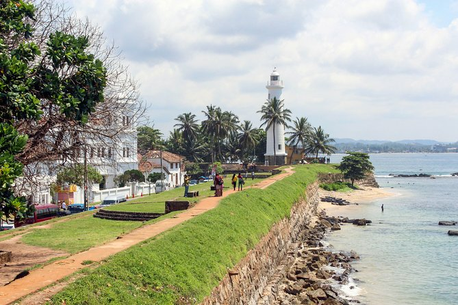 Southern Coast Highlights from Negombo