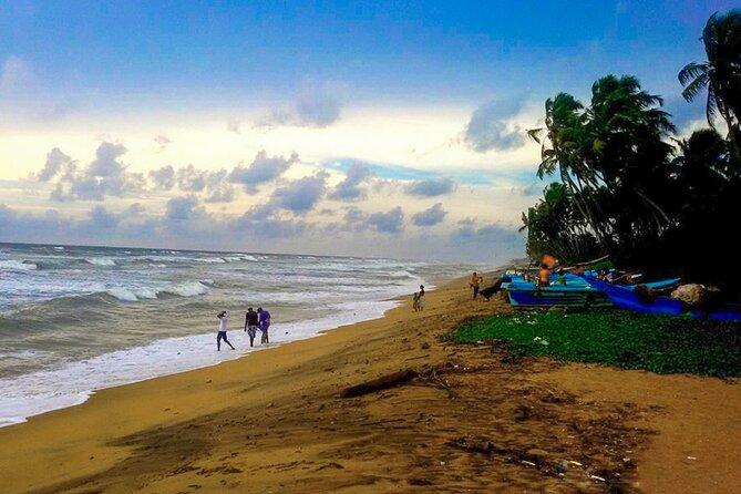Southern Coast Highlights from Panadura