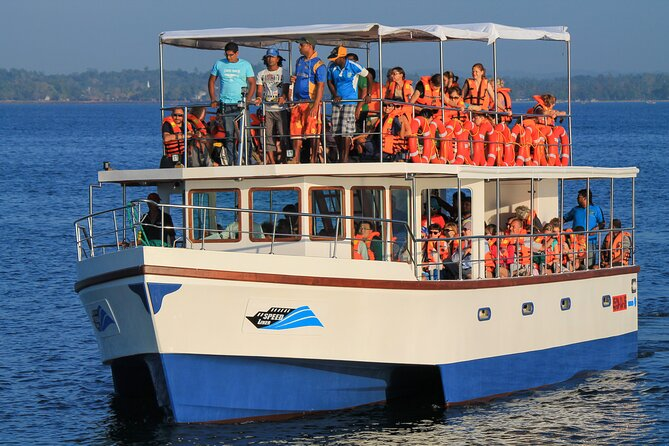 Whale Watching Boat Tour from Talpe