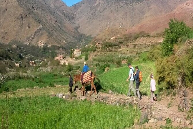 3 Days Family Trek in Morocco - Berber villages & Green Valleys and waterfalls