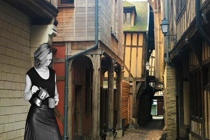 Private Guided Tour in Troyes with Licensed guide