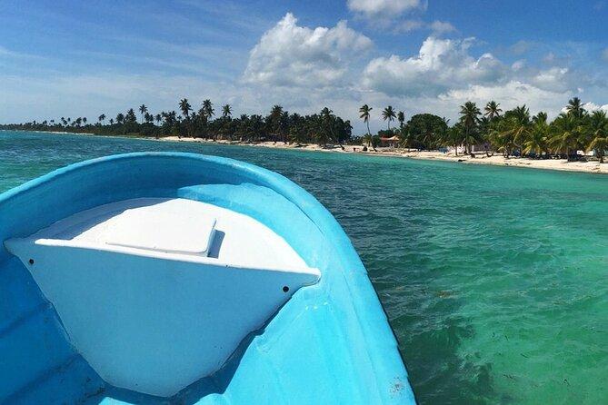 Private Boat Nature Tour of Saona Island