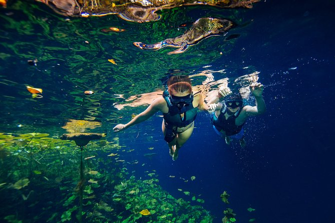 Xenotes Tour from Cancun and Riviera Maya
