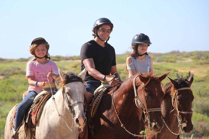 Horseback Riding Through Desert and Beach