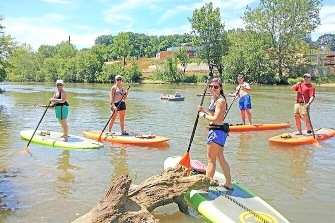 4-Mile Guided Paddleboard Tour on The French Broad River in Asheville