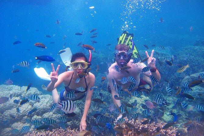 Nha Trang Island and Snorkeling full day tour