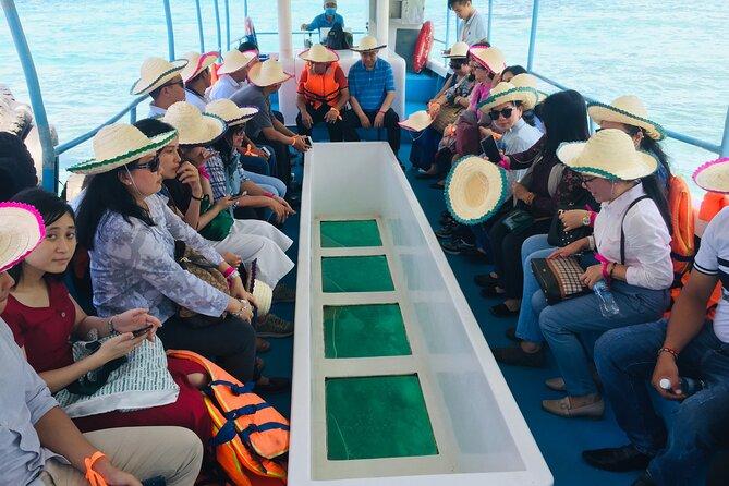 Glass-bottom boat trip on Nha Trang Bay full day tour