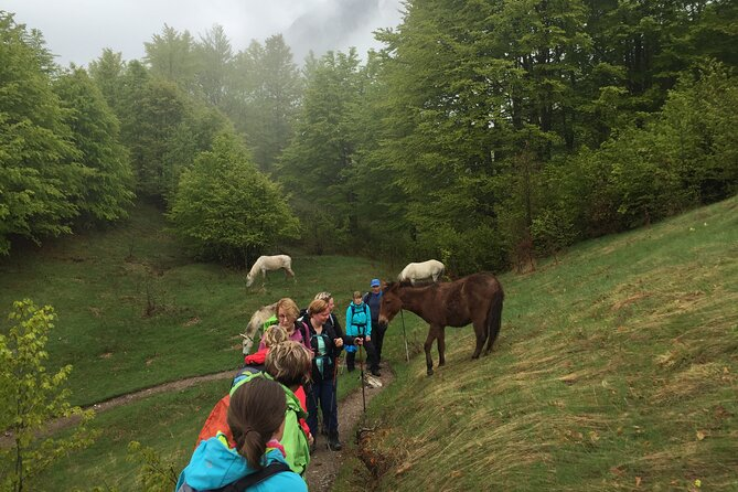11-Day Albania Highlights Private Hiking Tour from Tirana