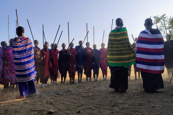 Private Full-Day Tour Maasai Village and Kikuletwa Hot Spring