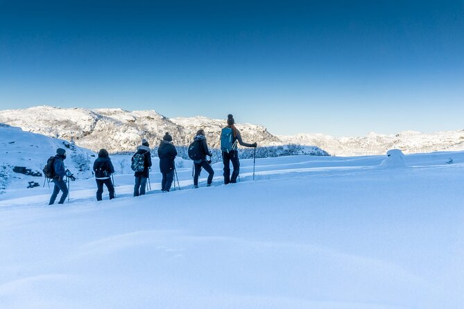 Lysefjord Cruise and Pulpit Rock Guided Hike - Winter Edition