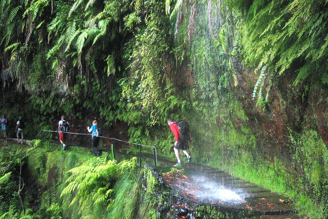 The King's Levada - Levada do Rei