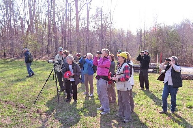 Asheville Private Guided Bird Watching Tour