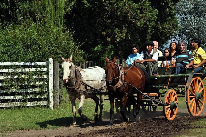 Private Tour: Don Silvano Gaucho Ranch from Buenos Aires